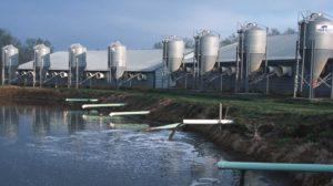 川に流される汚水